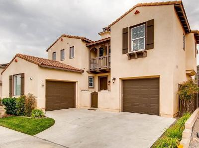 San Marcos Single Family Home For Sale: 485 Camino Verde