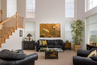 Single Family Home For Sale: 13657 Shoal Summit