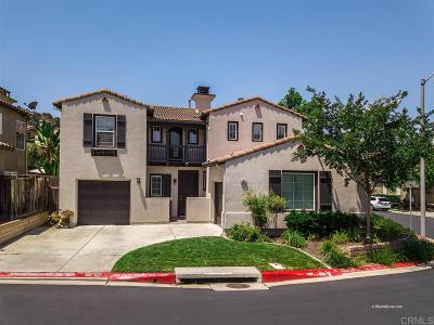 San Marcos Single Family Home For Sale: 496 Camino Verde