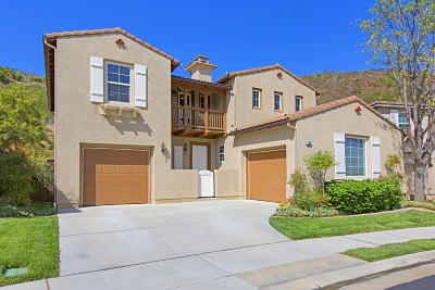 San Marcos Single Family Home For Sale: 586 Via Del Caballo