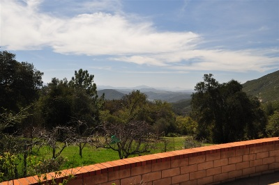 Santa Ysabel CA Single Family Home For Sale: $789,000