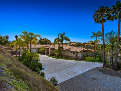 Fallbrook Single Family Home For Sale: 2749 Los Alisos Dr
