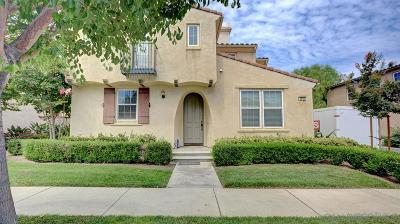 Riverside County Single Family Home For Sale: 4216 Windspring St.