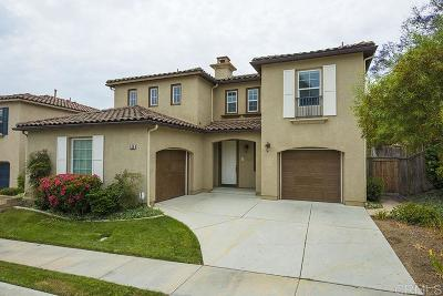 San Marcos Single Family Home For Sale: 539 Camino Verde