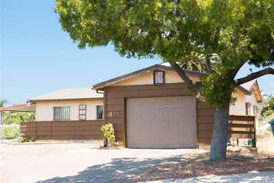 Chula Vista Single Family Home For Sale: 317 Topaz Court