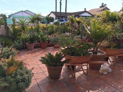 San Diego Single Family Home Contingent: 6166 Daisy