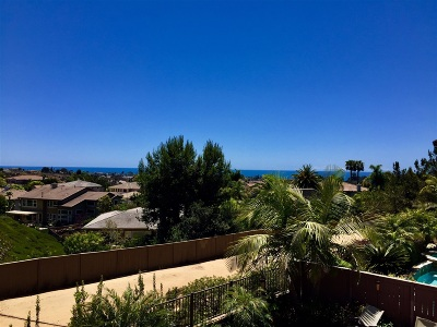 Encinitas CA Single Family Home For Sale: $1,729,000