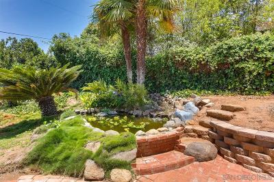 Escondido Single Family Home For Sale: 2157 Oak Hill Drive