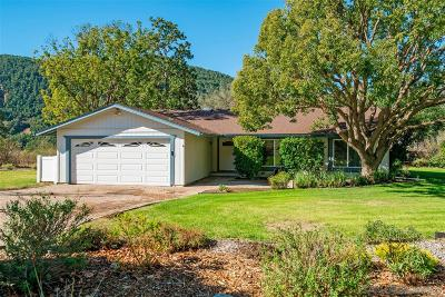 Single Family Home For Sale: 31912 Runway Dr