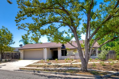 Single Family Home For Sale: 1217 Via La Ranchita