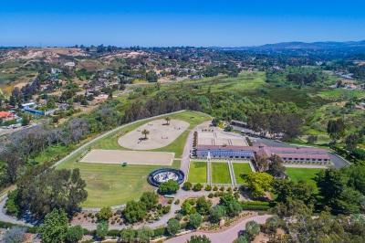 Rancho Santa Fe Single Family Home For Sale: 17575 Rancho La Noria