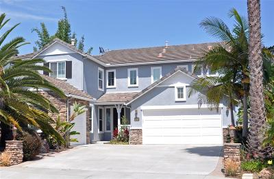 Carlsbad Single Family Home For Sale: 2137 Twain Ave.