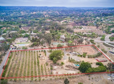 Encinitas Single Family Home For Sale: 3615 Fortuna Ranch Rd