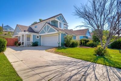 Murrieta Single Family Home For Sale: 24044 Falconer Dr.