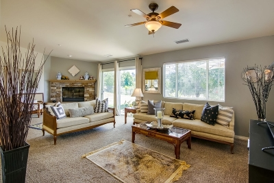 Valley Center Single Family Home For Sale: 19041 Paradise Mountain Rd