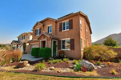 Single Family Home For Sale: 4105 Lake Shore Lane