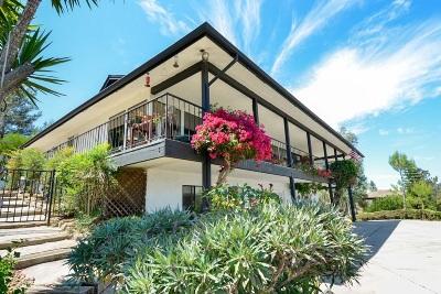 Escondido Single Family Home For Sale: 10972 Treeside Lane