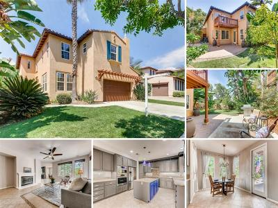 San Marcos Single Family Home For Sale: 390 Avenida La Cuesta