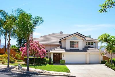 Single Family Home For Sale: 2576 Castellon Ter