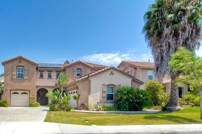Oceanside Single Family Home For Sale: 3147 Toopal