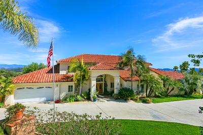 Fallbrook Single Family Home For Sale: 3672 Alta Vista