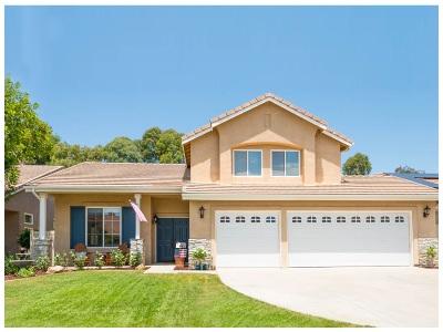 Temecula Single Family Home For Sale: 32360 Corte Zamora
