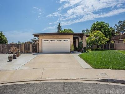 Escondido Single Family Home For Sale: 1351 Rock Hill Place