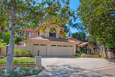 Escondido Single Family Home For Sale: 2977 La Trieste