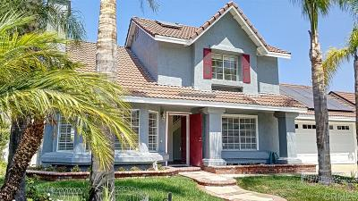 Oceanside Single Family Home For Sale: 4874 Meadowbrook Drive