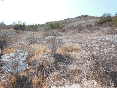 Fallbrook Residential Lots & Land For Sale: Pala Rd. #17