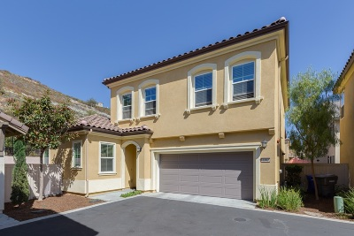San Marcos Single Family Home For Sale: 1383 Dolomite