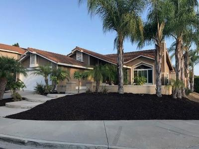 Single Family Home For Sale: 8861 Polanco St.
