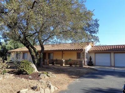 Valley Center Single Family Home For Sale: 19161 Paradise Mountain