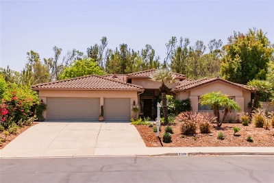 Escondido Single Family Home For Sale: 3369 Avenida Magoria