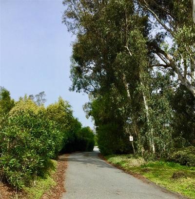 Rancho Santa Fe Residential Lots & Land For Sale: 16256 Via Del Alba #1, 2, 3