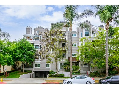 San Diego Attached For Sale: 3666 3rd Avenue #204