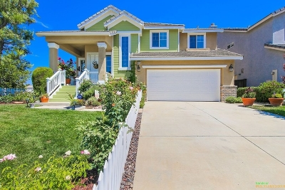 Murrieta Single Family Home For Sale: 39310 Majestic Cir