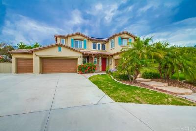 San Marcos Single Family Home For Sale: 1139 Ariana