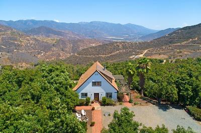 Fallbrook Single Family Home For Sale: 307 Rainbow Crest Rd