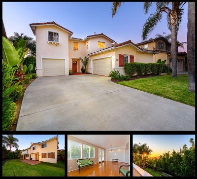 San Marcos Single Family Home For Sale: 1840 Sea Vista Pl