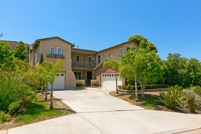 San Marcos Single Family Home For Sale: 2153 Goya Pl