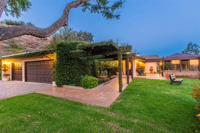 Single Family Home For Sale: 1138 Little Gopher Canyon Road
