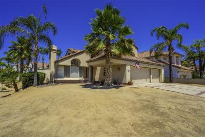 Murrieta Single Family Home For Sale: 40508 Via Diamante