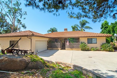 Riverside County, San Diego County Single Family Home For Sale: 1070 S Grade Rd
