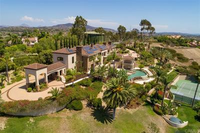 Rancho Santa Fe Single Family Home For Sale: 17261 Circa Oriente