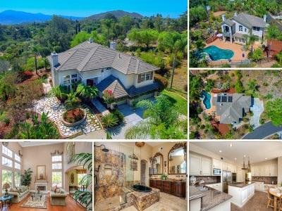 Escondido Single Family Home For Sale: 1369 Emeraude Gln