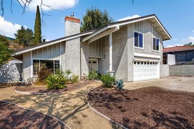 San Diego Single Family Home For Sale: 14956 Del Diablo Ln