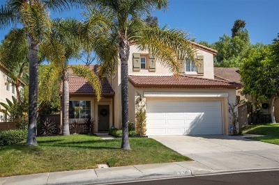 Carlsbad Single Family Home For Sale: 3298 Rancho Famosa