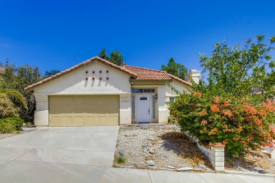 San Marcos Single Family Home For Sale: 1316 Camino Del Sol