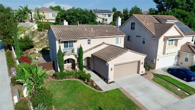 Chula Vista Single Family Home For Sale: 1361 Old Janal Ranch Rd